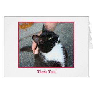 Carte de remerciements, blanc à l'intérieur