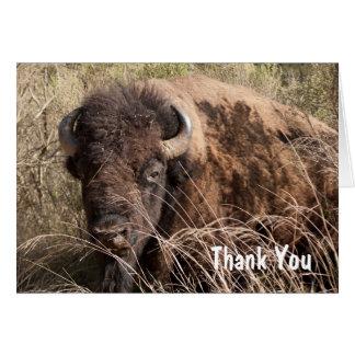 Carte de remerciements de bison