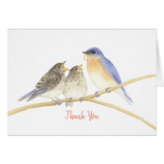 Carte de remerciements d'oiseaux bleus