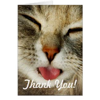 Carte de remerciements drôle de chat