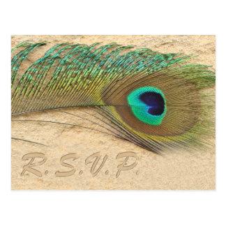 carte de rsvp de mariage de bleu de paon