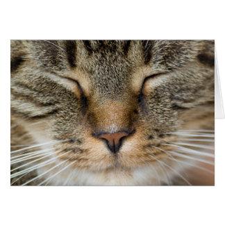 Carte de salutation - visage de chat heureux