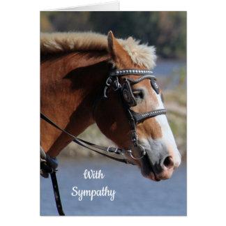 Carte de sympathie belge de cheval