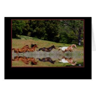 Carte de sympathie de cheval, avec les chevaux de