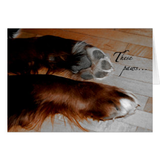 Carte de sympathie de chien