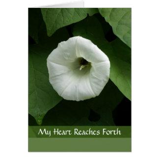 Carte de sympathie de condoléance avec la fleur bl