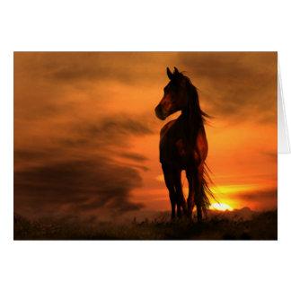 Carte de sympathie équine de cheval