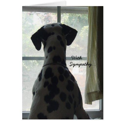 Carte de sympathie -- Perte de chien   Zazzle