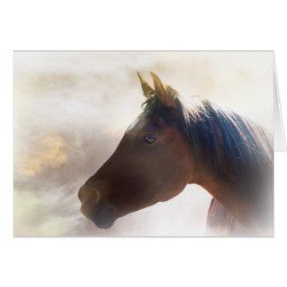 Carte de sympathie spirituelle de cheval
