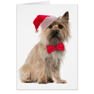 Carte de Terrier de cairn de Père Noël