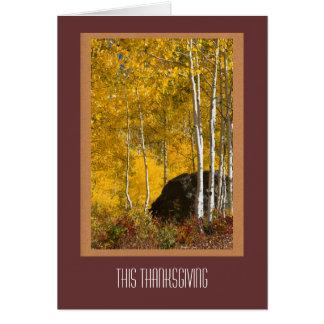Carte de thanksgiving de trembles de chute