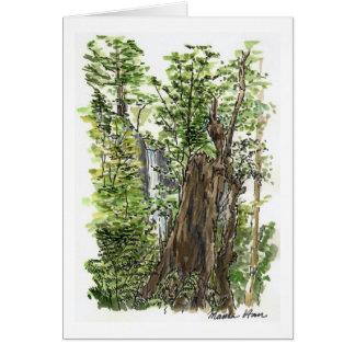 Carte de tronçon et de cascade