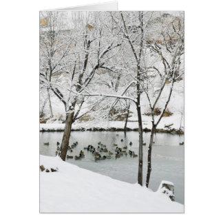 carte de vacances d'étang d'hiver
