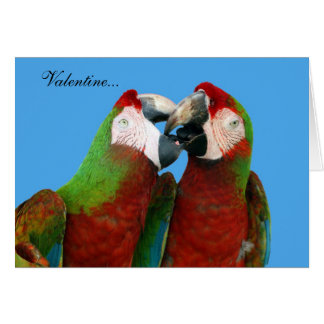Carte de Valentine de perroquet