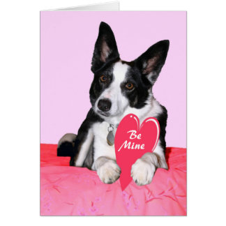 "Carte de Valentine - ""pie """