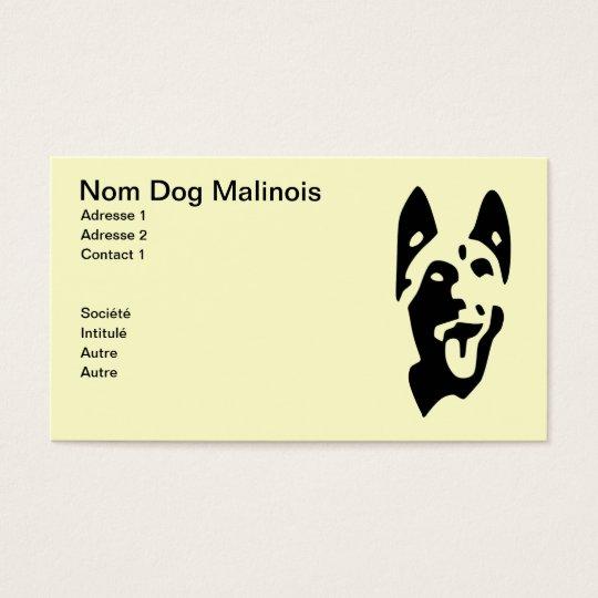 carte de visite chien  malinois