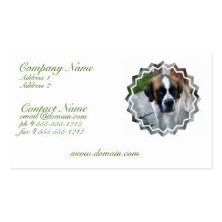 Carte de visite de chien de St Bernard