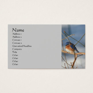 Carte de visite de nature d'oiseau bleu d'hiver