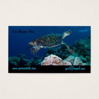 Carte de visite de tortue de mer
