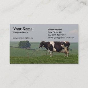 Carte De Visite Vache Laitiere