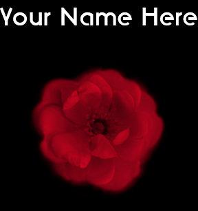 Carte De Visite Rose Rouge Fond Noir