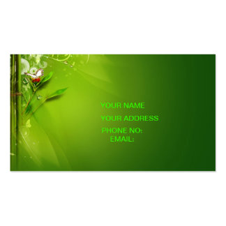 carte de visite vert de ciel
