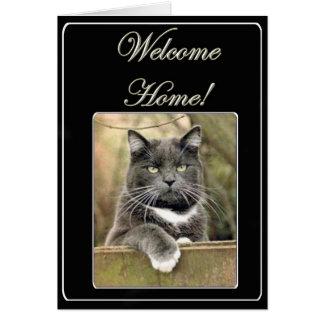 Carte de voeux à la maison bienvenue de chat