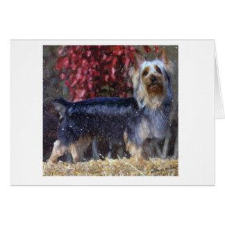 Carte de voeux australienne de blanc de chien de