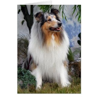 Carte de voeux bleue de blanc de merle de chien de