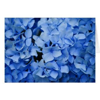 Carte de voeux bleue d'hortensia