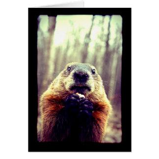 Carte de voeux chancelante de Marmot
