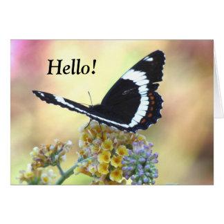Carte de voeux d'amiral Butterfly