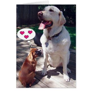 Carte de voeux d'amour (avec des chiens)