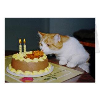 Carte de voeux d'anniversaire de chat tigré