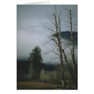 Carte de voeux de brume d'hiver