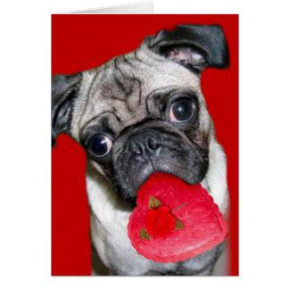 Carte de voeux de carlin de Saint-Valentin