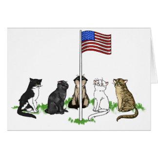 Carte de voeux de chat de Jour du Souvenir