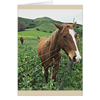 Carte de voeux de cheval, vierge