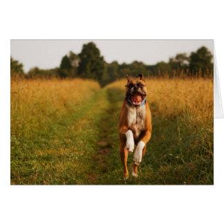 Carte de voeux de chien de boxeur