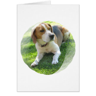 Carte de voeux de chien de chasse de beagle