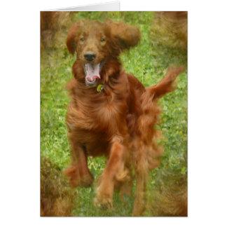 Carte de voeux de chien de poseur irlandais
