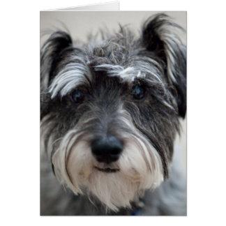 Carte de voeux de chien de Schnauzer