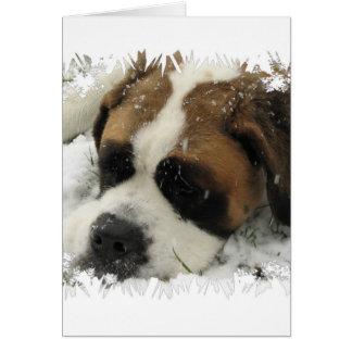 Carte de voeux de chien de St Bernard