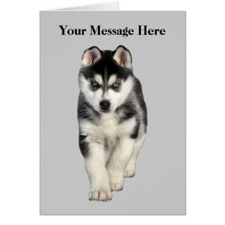 Carte de voeux de chien de traîneau sibérien