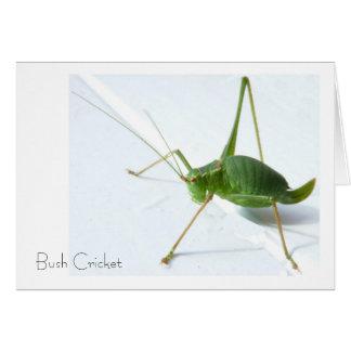 Carte de voeux de cricket de Bush