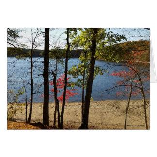 Carte de voeux de feuillage d'étang de Walden
