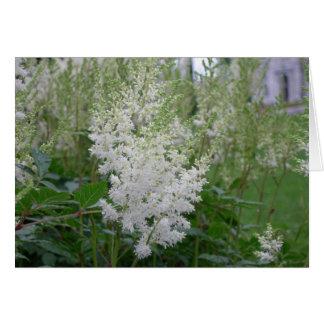 Carte de voeux de fleurs blanches