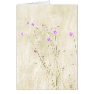 Carte de voeux de fleurs sauvages