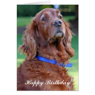 Carte de voeux de joyeux anniversaire de chien de