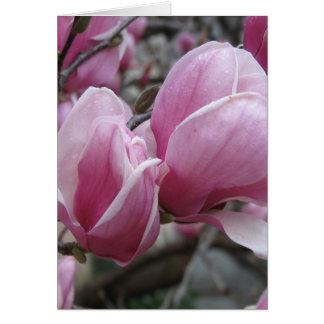 Carte de voeux de magnolia